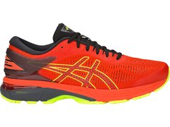 Кроссовки ASICS GEL-KAYANO 25 1011A019 801