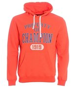 Champion Hooded Sweatshirt 209036-TGR