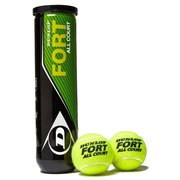Теннисные мячи Dunlop Fort All Court TS 4Ball 601235