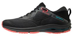 Кроссовки для бега Mizuno Wave Rider GoreTex 2 (Women) J1GD2079-09
