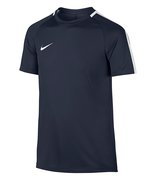 Футболка Nike Dry Squad Football Top 832967 451