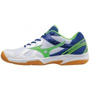 Кроссовки Mizuno CYCLONE SPEED V1GA1780-35